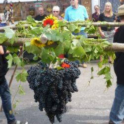 Италия праздник вина